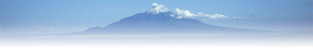 小腸デトックス ベントナイト 火山灰